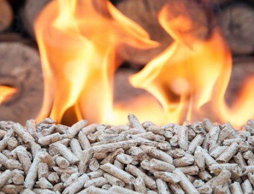 El Ente Vasco de la Energía premiado por su labor de apoyo a la biomasa