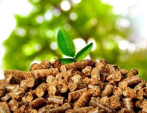 Sodebur premia los proyectos de biomasa más sostenibles y eficientes de Burgos