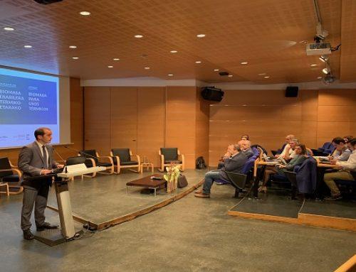 La biomasa es la fuente de energía renovable más utilizada en Euskadi con un importante potencial de crecimiento